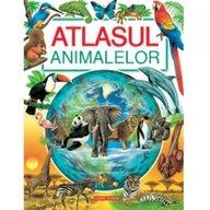 Corint - Atlasul animalelor