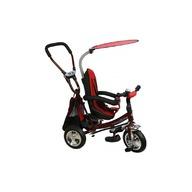 Baby Mix Tricicleta copii cu Scaun Reversibil  Safari WS611 Bordo