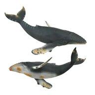 Collecta - Balena cu cocoasa