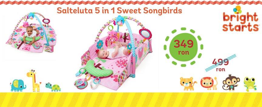 PROMO Salteluta Bright Stars - Sweet Songbirds