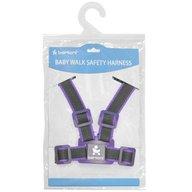 Bertoni - Ham de siguranta, Grey & Violet