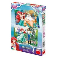 Dino Toys - Puzzle 2 in 1 Ariel 66 piese