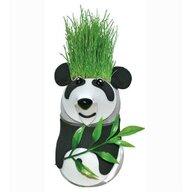 Bambinice - Set pentru experimentat Cap de iarba Panda