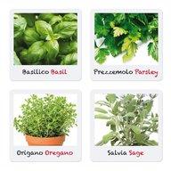 Quercetti - Joc Micul Gradinar Cultiva Plante Aromatice