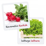 Quercetti - Joc Micul Gradinar Cultiva Salata si Ridichii