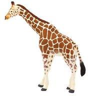 Mojo - Figurina Girafa Adulta