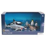 National Geographic - Set 7 figurine - Animalute polare