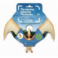 Natural History Museum - Incredibilul Pteranodon