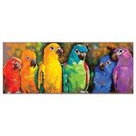 Melissa & Doug Puzzle 1000 Piese Papagali Curcubeu
