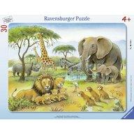 Ravensburger - Puzzle Africa salbatica, 30 piese
