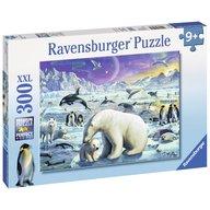 Ravensburger - Puzzle Animale polare, 300 piese