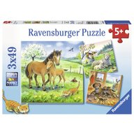 Ravensburger - Puzzle Animale si pui, 3x49 piese