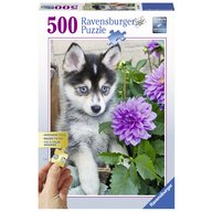 Ravensburger - Puzzle Catel Husky, 500 piese