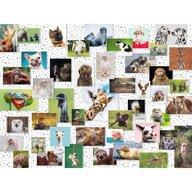 Ravensburger - Puzzle animale Colaj cu animale Puzzle Adulti, piese 1500