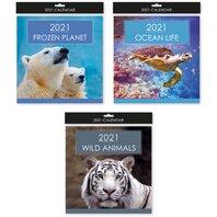 2021 CALENDAR  PATRAT ANIMALE SALBATICE