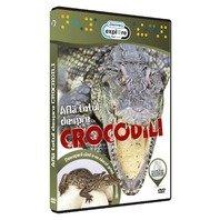 DVD Afla totul despre crocodili