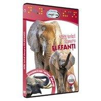 DVD Afla totul despre elefanti