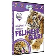 DVD Afla totul despre felinele mari + jucarie
