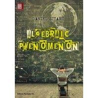 ALGEBRAIC PHENOMENON