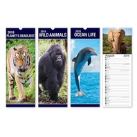 Calendar Slim model design animale
