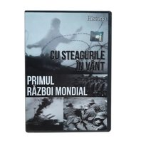 DVD Cu steagurile in vant