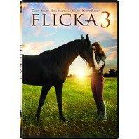 DVD FLICKA 3