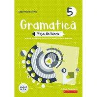 GRAMATICA. FISE DE LUCRU. CLASA V. 2020-2021