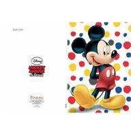 Mickey Mouse Felicitare (3)