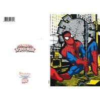 Spiderman Felicitare (3)