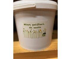 Miere poliflora munte 5 kg CasaBIO