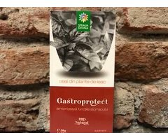NATURAL CEAI GASTROPROTECT 50 GR