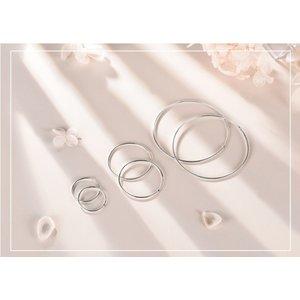 Cercei din argint cu Cercuri Mici