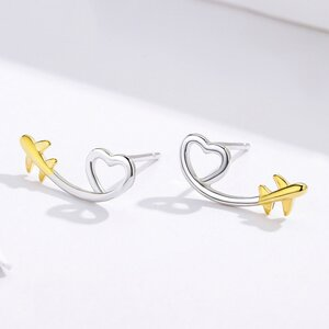 Cercei din argint Heart & Gold Plane