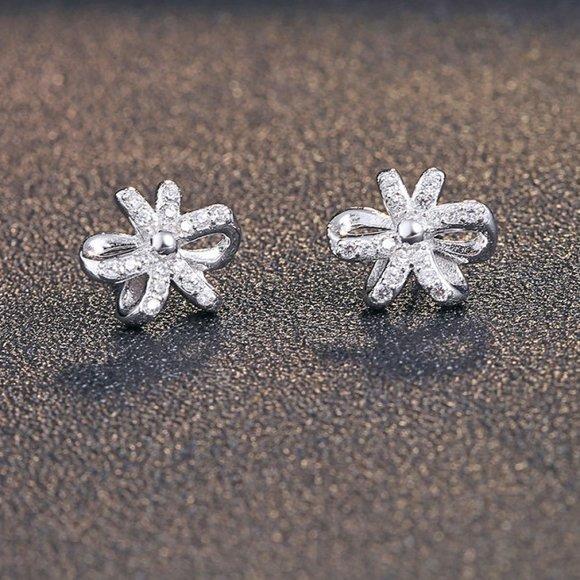 Cercei din argint Silvery Ribbon