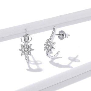 Cercei din argint Special Stars