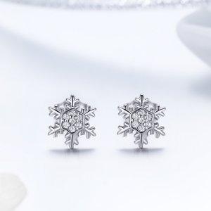 Cercei din argint Winter Snowflakes