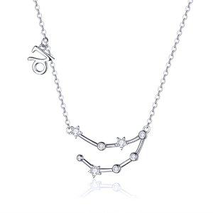 Colier din argint cu Constelatia Capricorn silver