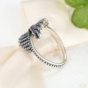 Inel din argint cu Aripi Patinate
