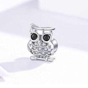 Talisman din argint Beautiful Owl