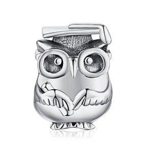 Talisman din argint Wise Owl