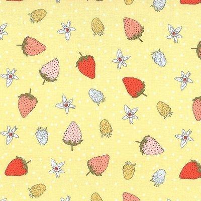 Designer fabric Michael Miller - Fraises Honey