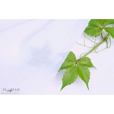 Cotton Gauze Fabric - Calusar White