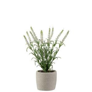 Naida Floare artificiala in ghiveci, Plastic, Alb