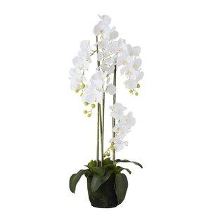 Orhidee, Floare artificiala ghiveci mare, Plastic, Alb