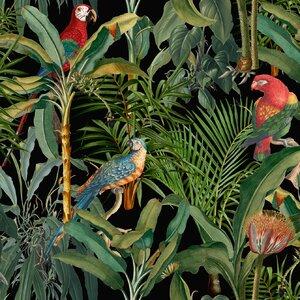Parrots Of Brasil  Set 3 role tapet, Netesut, Verde