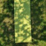 Tave Runner, Bumbac, Verde