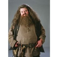Barba si mustata Hagrid, swiss net, lucrata manual