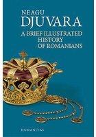 A brief illustrated history of romanians - Neagu Djuvara
