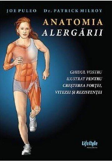 Anatomia alergarii