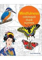 Coloreaza dupa numere - Mindfulness
